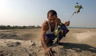 Hindistan'da 37 Yıldır Ağaç Dikerek Kendine Orman Yaratan Adam