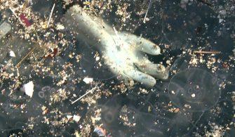 Kuruçeşme sahilinde çevre kirliliği